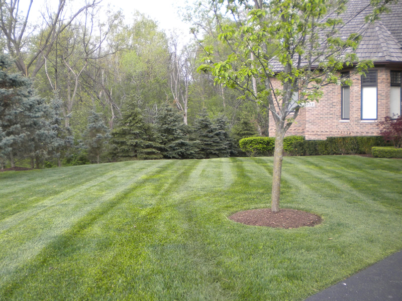Macomb county landscape and hardscape design photo gallery for Landscape design michigan